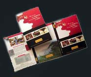 trifold, bioflod flyers